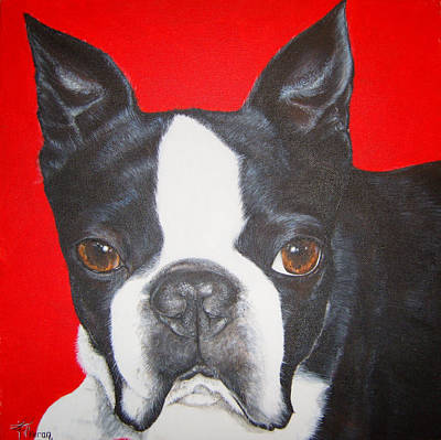 Boston Terrier Art Print by Keran Sunaski Gilmore