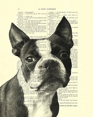 Cute Dogs Digital Art - Boston Terrier Portrait In Black And White by Madame Memento