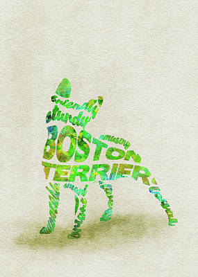 Painting - Boston Terrier Watercolor Painting / Typographic Art by Inspirowl Design