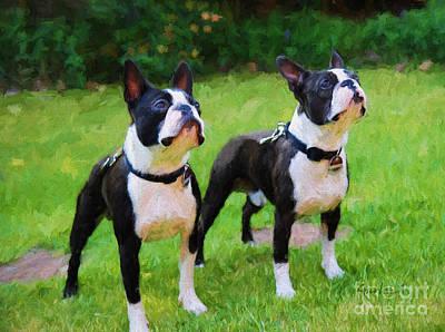 Switzerland Mixed Media - Boston Terriers  by Garland Johnson