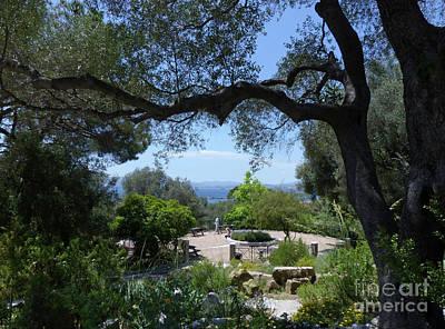 Photograph - Botanic Gardens - Gibraltar by Phil Banks