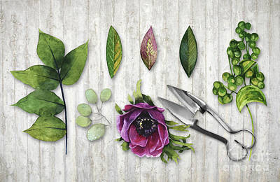 Nature Study Painting - Botanica I Botanical Flower, Leaf And Berry Nature Study by Tina Lavoie