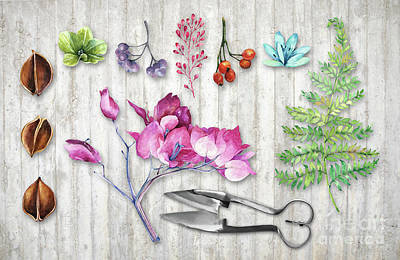 Nature Study Painting - Botanica II Botanical Nature Study Flower, Leaf Seeds by Tina Lavoie