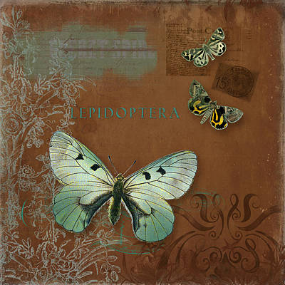 Botanica Vintage Butterflies N Moths Collage 4 Print by Audrey Jeanne Roberts