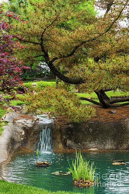 Photograph - Botanical Bliss by Jennifer White