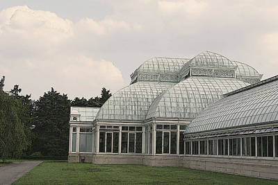 Photograph - Botanical Conservatory by Margie Avellino