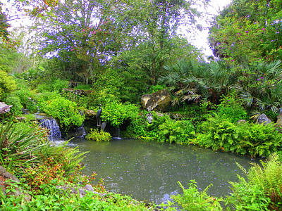 Photograph - Botanical Garden And Waterfall I by Sheri McLeroy