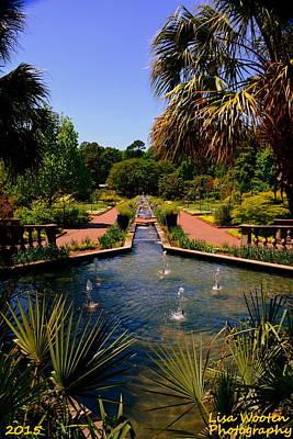 Photograph - Botanical Garden 2 by Lisa Wooten