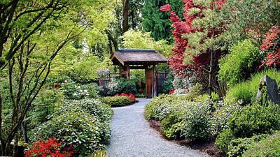 Photograph - Botanical Garden by Elf Evans