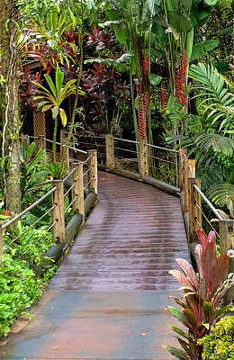 Photograph - Botanical Garden Pathway by Pamela Walton