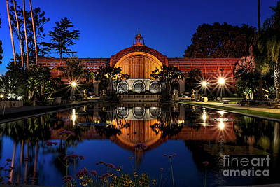 Photograph - Botanical Gardens At Balboa by Ken Johnson