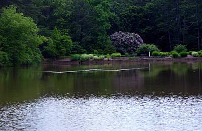 Photograph - Botanical Landscape - Georgia by Adrian DeLeon