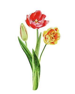 Painting - Botanical Tulip Bouquet Watercolor by Irina Sztukowski