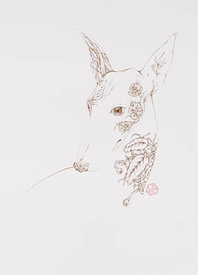 Drawing - Botanicalia Greyhound by Karen Robey