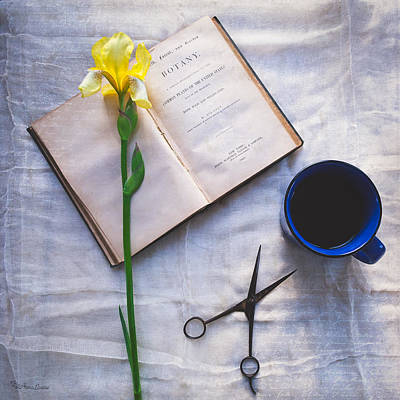 Photograph - Botany And Coffee by Anna Louise