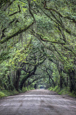 Country Roads Photograph - Botany Bay Country Road by Dustin K Ryan