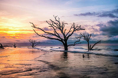 Photograph - Botany Bay Dawn by Phyllis Peterson