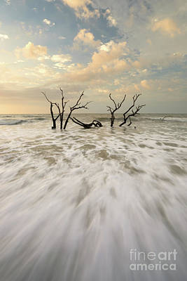Photograph - Botany Bay In South Carolina by Benedict Heekwan Yang