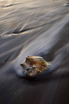 Atlantic Ocean Photograph - Botany Bay Iv by Benjamin DeHaven