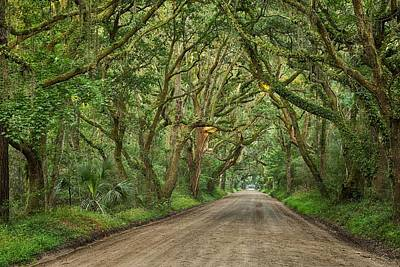 Botany Bay Photograph - Botany Bay Road by Todd Wise