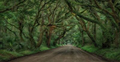 Botany Bay Photograph - Botany Bay Trees by Todd Wise
