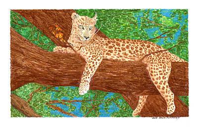 Drawing - Botswana Leopard by Jack Pumphrey