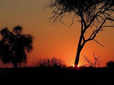 Photograph - Botswana Sunrise by Jennifer Wheatley Wolf