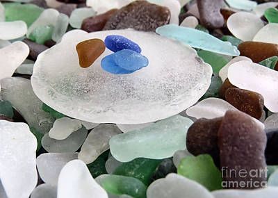 Photograph - Bottle Bottom Sea Glass by Janice Drew