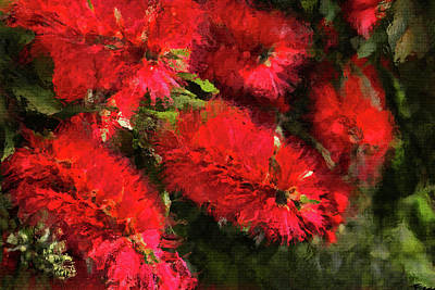 Photograph - Bottle Brush Abstract 2 by HH Photography of Florida
