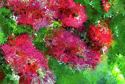 Photograph - Bottle Brush Abstract by HH Photography of Florida