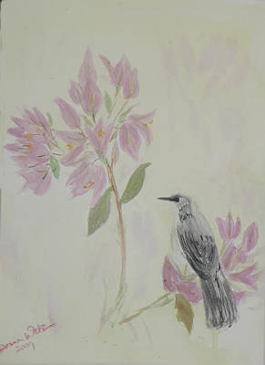 Bougainvillea And Mockingbird Art Print by Donna Walsh