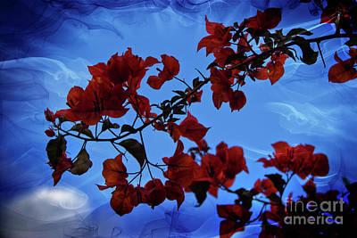 Photograph - Bougainvillea At Joe's Secret Garden V by Al Bourassa