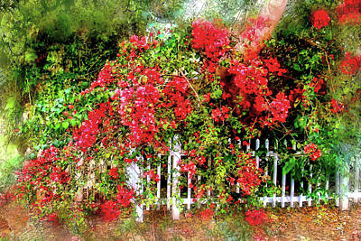 Photograph - Bougainvillea Cascade by HH Photography of Florida