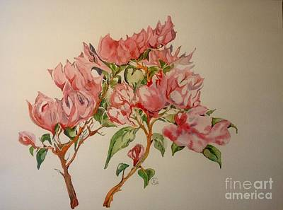 Painting - Bougainvillea by Iya Carson