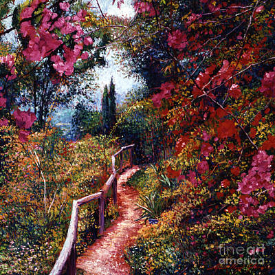 Pathways Painting - Bougainvillea Path Tuscany by David Lloyd Glover