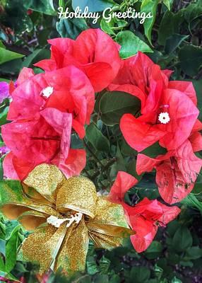 Photograph - Bouganvillea Wreath by Anne Sands
