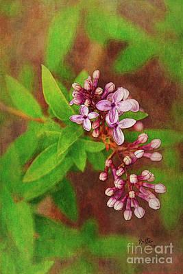 Digital Art - Bough Of Lilacs by Krista-