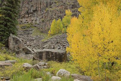 Photograph - Boulder Autumn Colors by Kunal Mehra