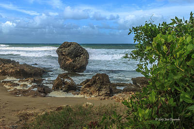 Photograph - Boulder Beach by Jose Oquendo