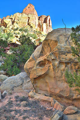 Photograph - Boulder Castle by Ray Mathis