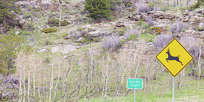 Photograph - Boulder County Deer Crossing Signs Panoramic by James BO Insogna