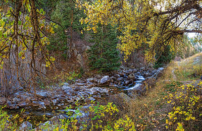 Photograph - Boulder Creek Autumn View  by James BO  Insogna