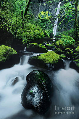 Photograph - Boulder Elowah Falls Columbia River Gorge Nsa Oregon by Dave Welling