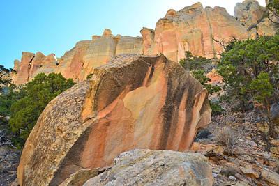 Photograph - Boulder-notom Varnish by Ray Mathis