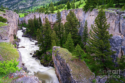 Photograph - Boulder River Canyon by Aaron Whittemore