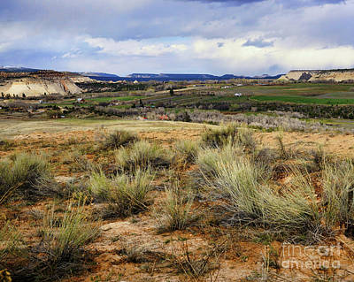 Photograph - Boulder Utah by Roxie Crouch
