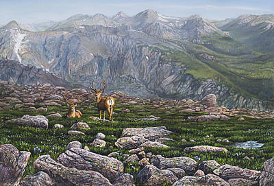 Rocky Mountain National Park Painting - Boulderfield Bucks by Aaron Spong