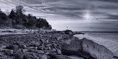 Photograph - Boulders And Barnacles by Robin-Lee Vieira