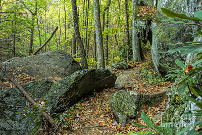 Photograph - Boulders On The Bear Hair Gap Trail by Barbara Bowen