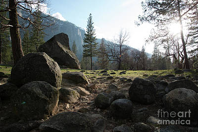 Photograph - Boulders Yosemite National Park by Terry Garvin